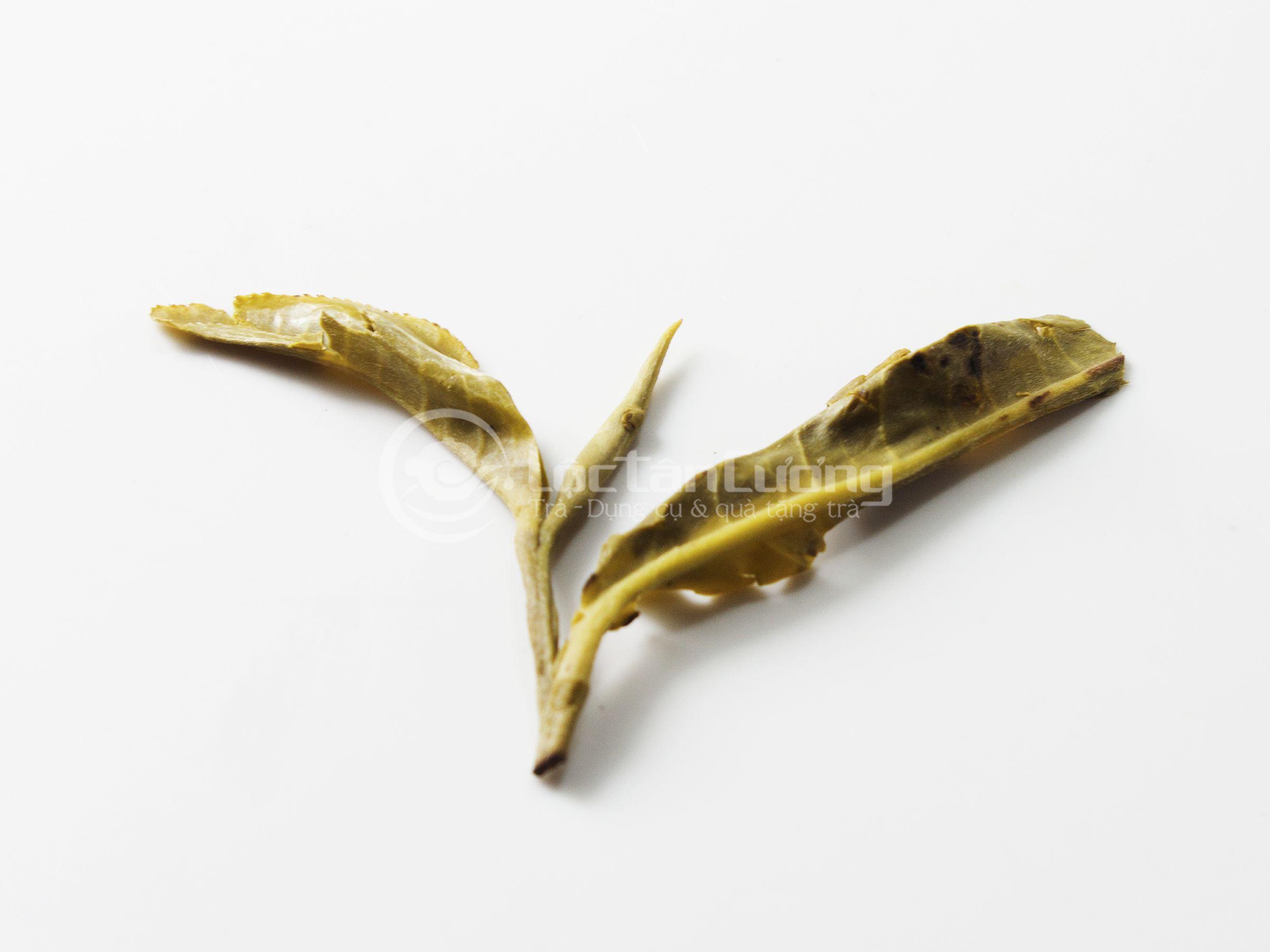 Trà hái là 1 tôm 2 lá nên sau khi pha xong, bạn có thể kiểm tra bã của trà còn nguyên vẹn