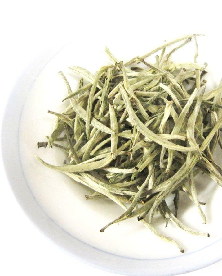 Bạch trà shan tuyết Hà Giang