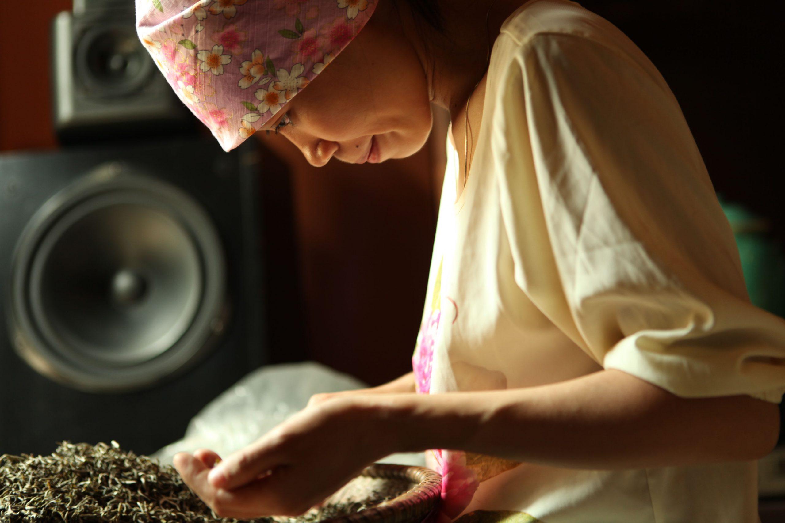 Công đoạn lên hương trà được xem là quan trọng nhất để quyết định hương thơm và vị của trà shan tuyết Hà Giang