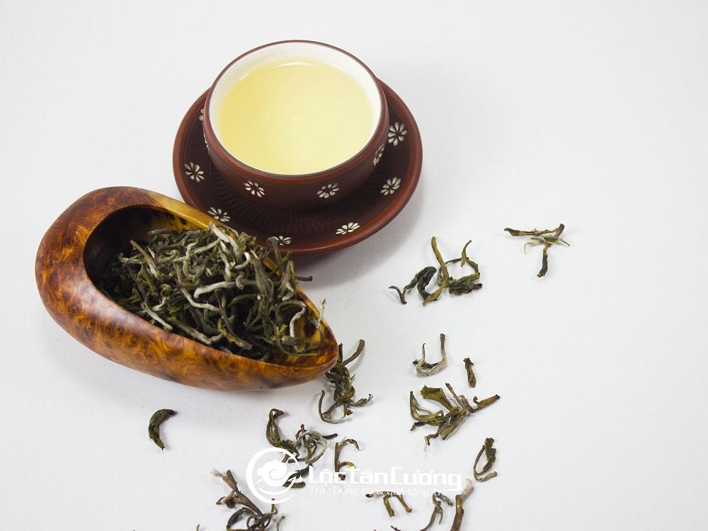 Trà shan tuyết cổ thụ Tà Xùa - Lộc Tân Cương